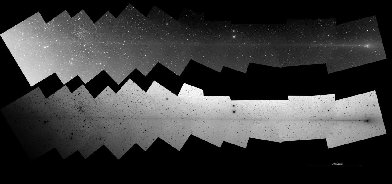 PanSTARRS: Anti Comet Tail