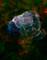 2014 September 12: Supernova Remnant Puppis A