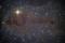 Stars are forming in Lynds Dark Nebula