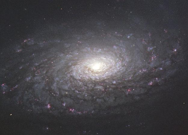 M63: La Galaxia Girasol