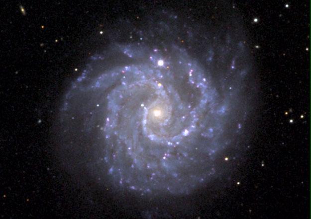 Galaxia Espiral Alargada NGC 3184