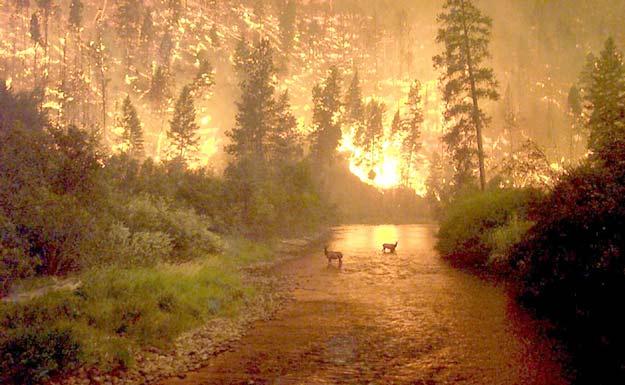 Fuego en la Tierra