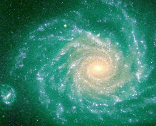 La Galaxia Espiral NGC 1232