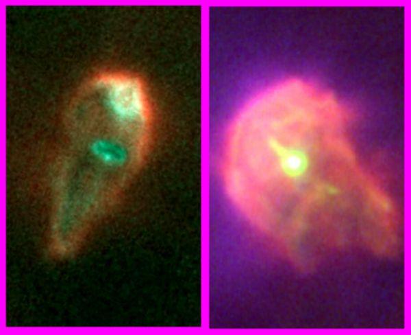 Supervivientes protoplanetarios en Orión