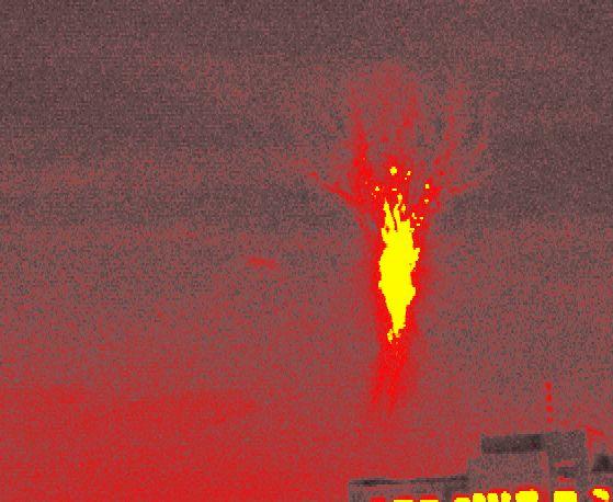 El duende del árbol en llamas