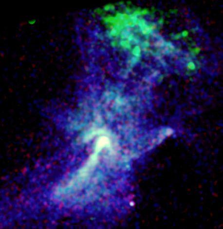 Rayos X y el Pulsar Circinius