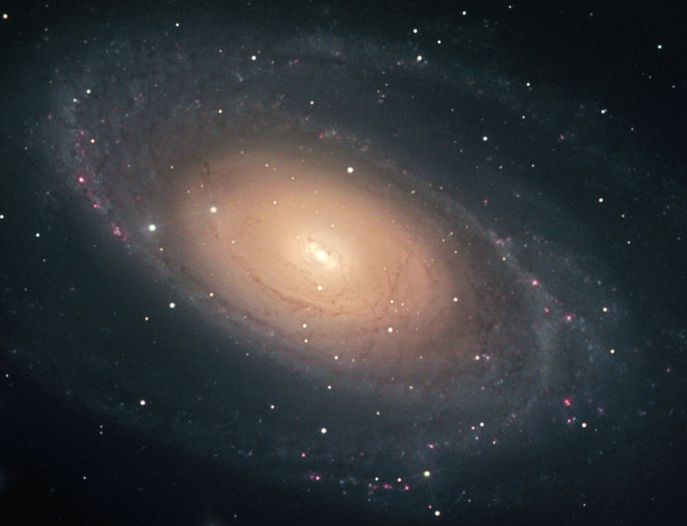 apod 2002 june 20 bright galaxy m81