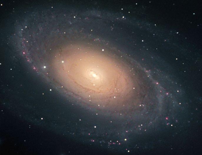 Jasná galaxie M81