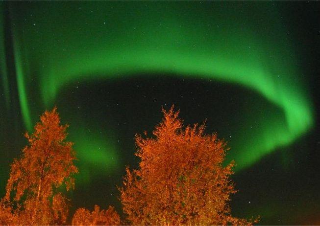 Una Aurora en Anillo