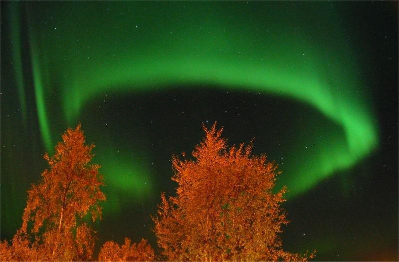http://apod.gsfc.nasa.gov/apod/image/0210/aurora_lindersen2_full.jpg