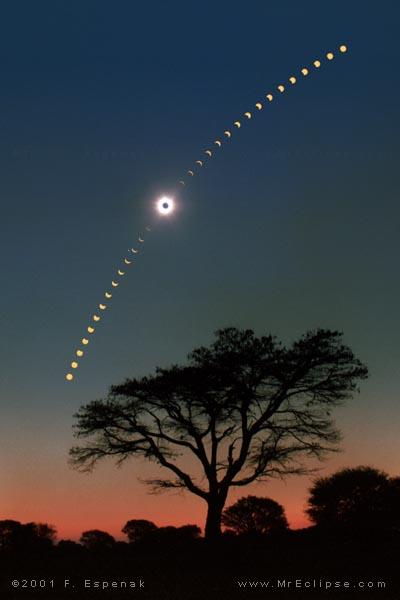Eclipse Sobre Acacia