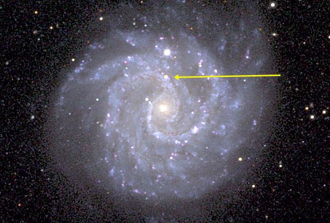La conexión entre supernova y estallido de rayos Gamma