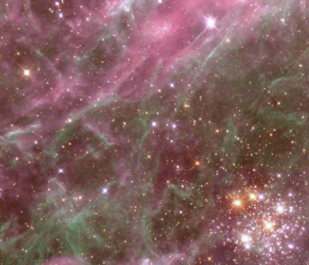 Habitante de la Nebulosa Tarantula