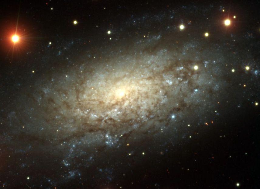 NGC 3621: mucho más allá del Grupo Local
