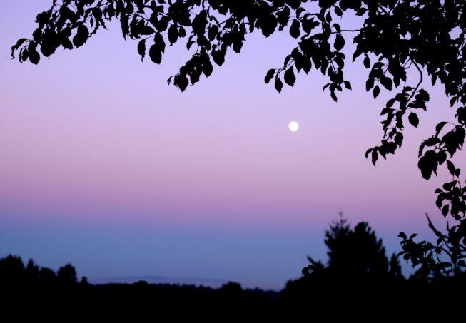 Ascenso del Crepúsculo
