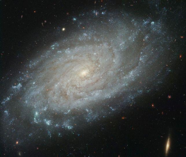 NGC 3370: una vista más detallada
