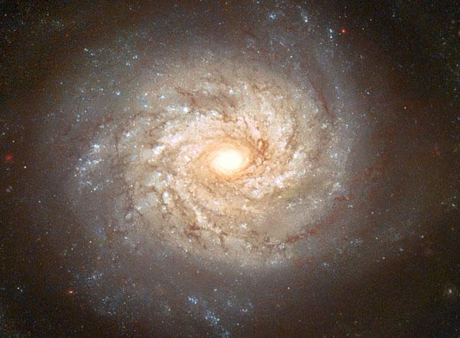 La Galaxia Espiral NGC 3982 Antes de una Supernova