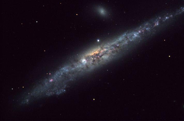 NGC 4631 es la Galaxia de la Ballena