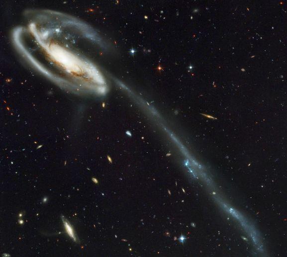 Arp 188 es la Galaxia Renacuajo