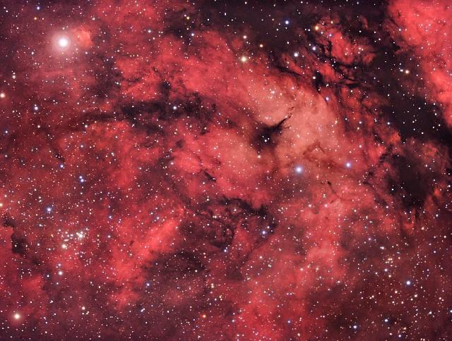 Un campo estelar en el Cisne