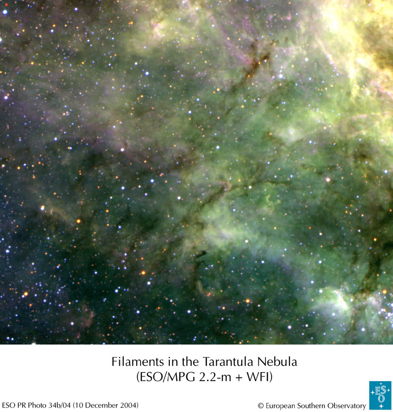 APOD: 2004 December 28 - Tentacles of the Tarantula Nebula