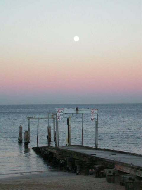El Cinturón de Venus sobre la playa de Elwood