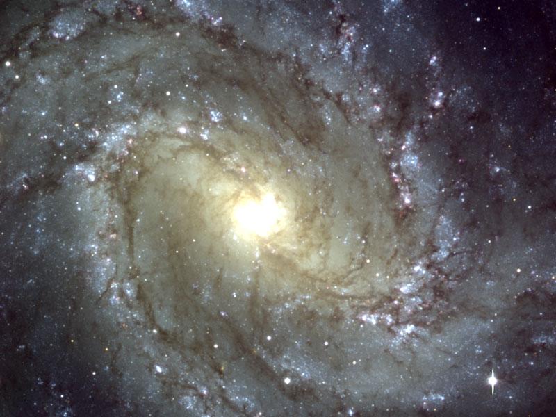 M83: La galaxia Molinete del Sur observada desde el VLT