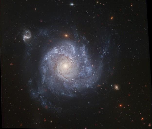 NGC 1309 y compañía