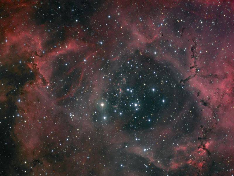 Polvo y ligeras en la Nebulosa Rosette