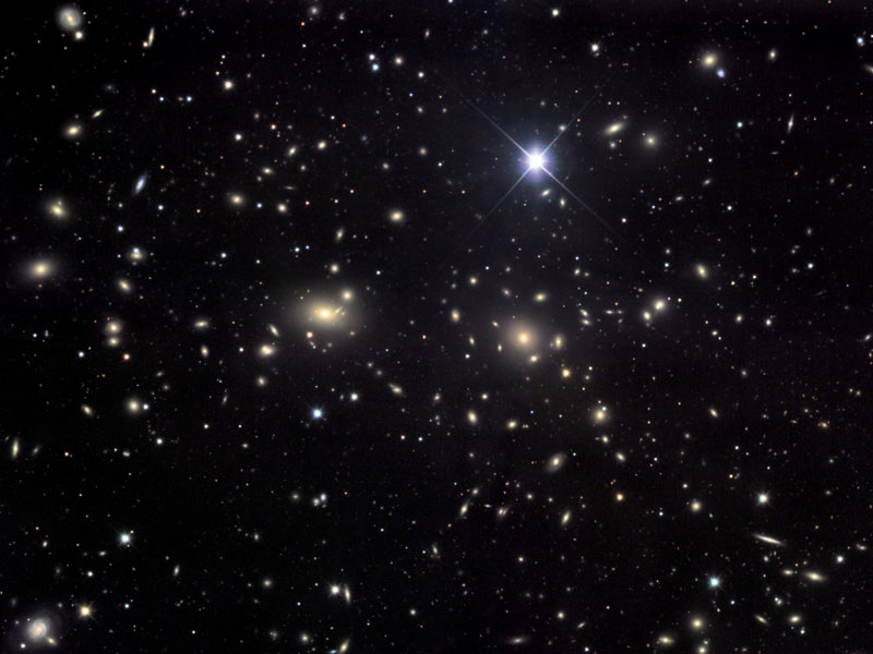 The Coma Cluster av Galaxies