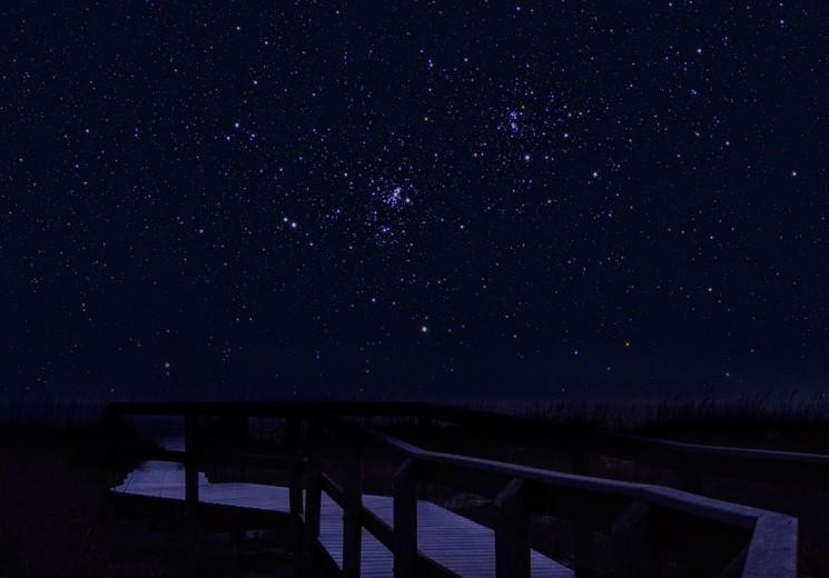Soñando con enjambres de estrellas