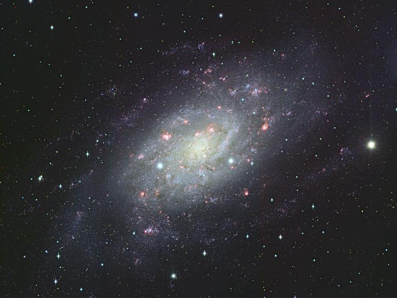 La Galaxia en Espiral NGC 2403 por el Subaru