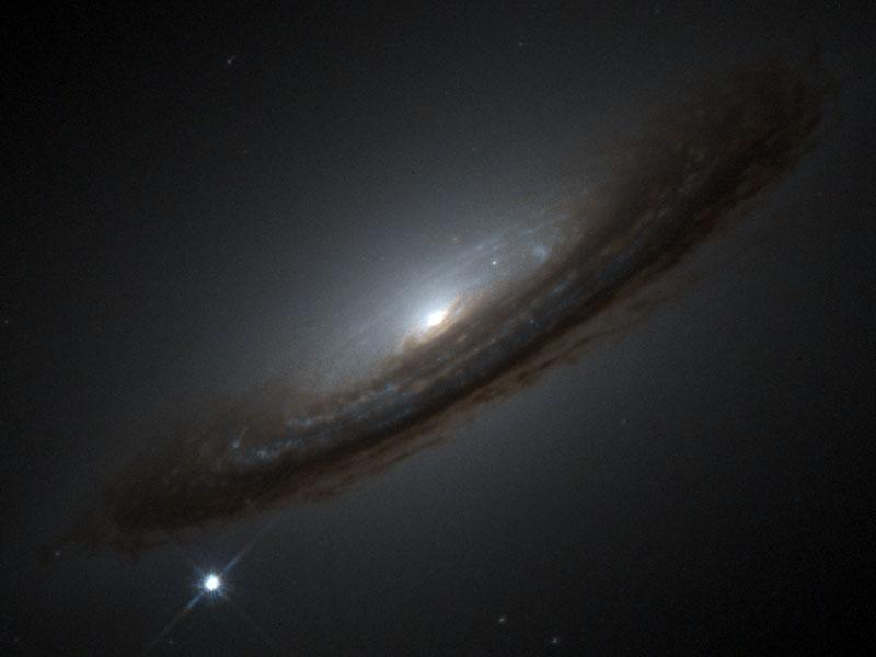Rumores de un universo extraño