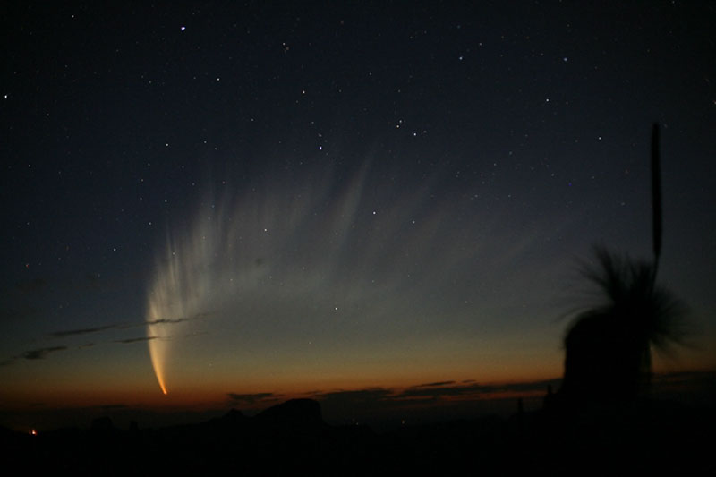 Apod 2007 January 22 The Magnificent Tail Of Comet Mcnaught
