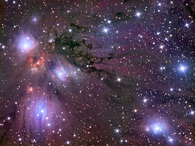 Estrellas, Polvo y Nebulosa en NGC 2170