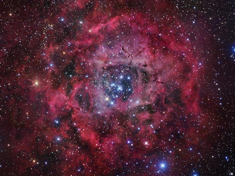 La Nebulosa Roseta
