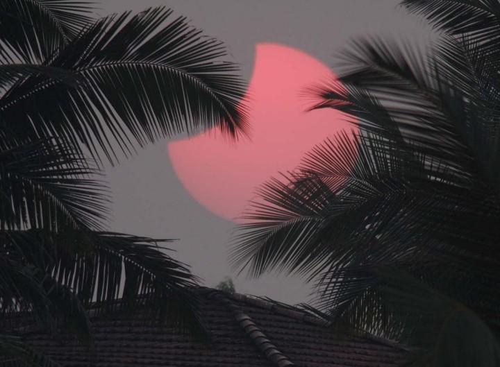 Siluetas en Goa