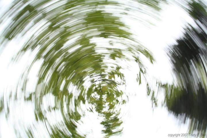 Rastros de hojas circundantes