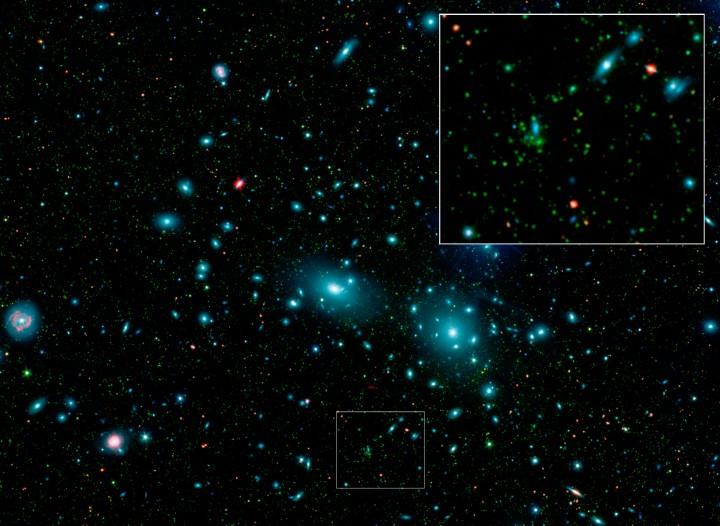 Trpasličí galaxie v kupě ve Vlasech Bereniky
