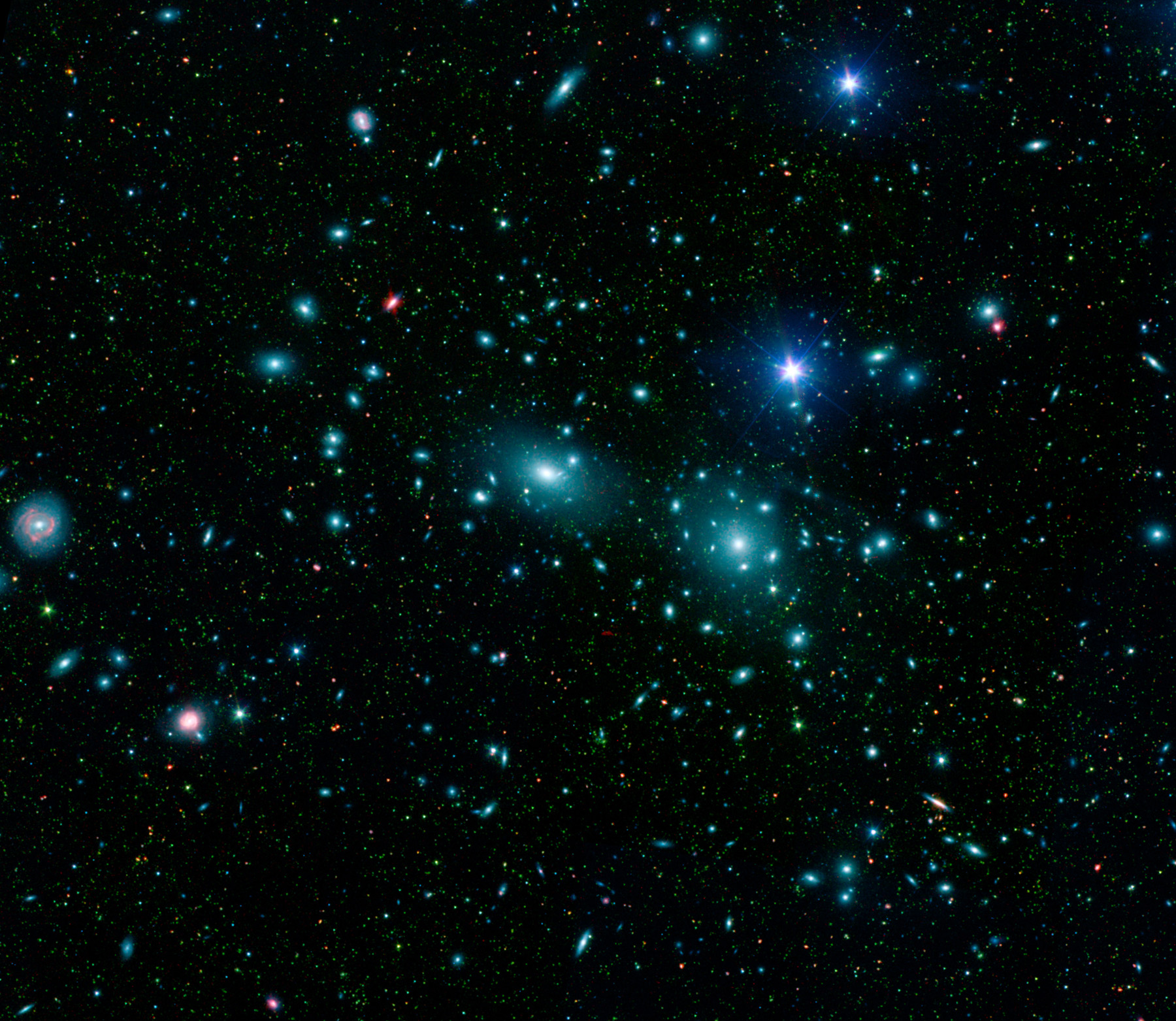2007 May 31 - Dwarf Galaxies in the Coma Cluster