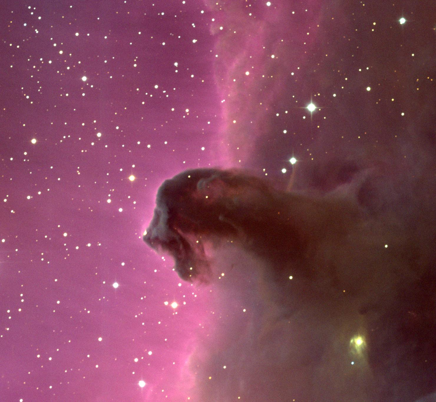2007 May 27 - The Horsehead Nebula