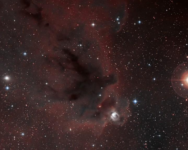 LDN 1622: Nebulosa oscura en Orion
