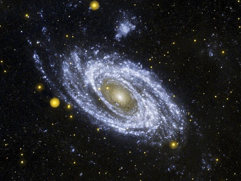 Brillante galaxia en espiral M81 en ultravioleta desde Galex