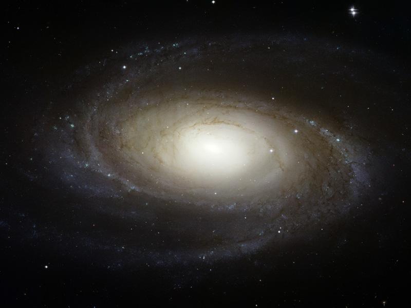 La brillante galaxia espiral M81 por Hubble