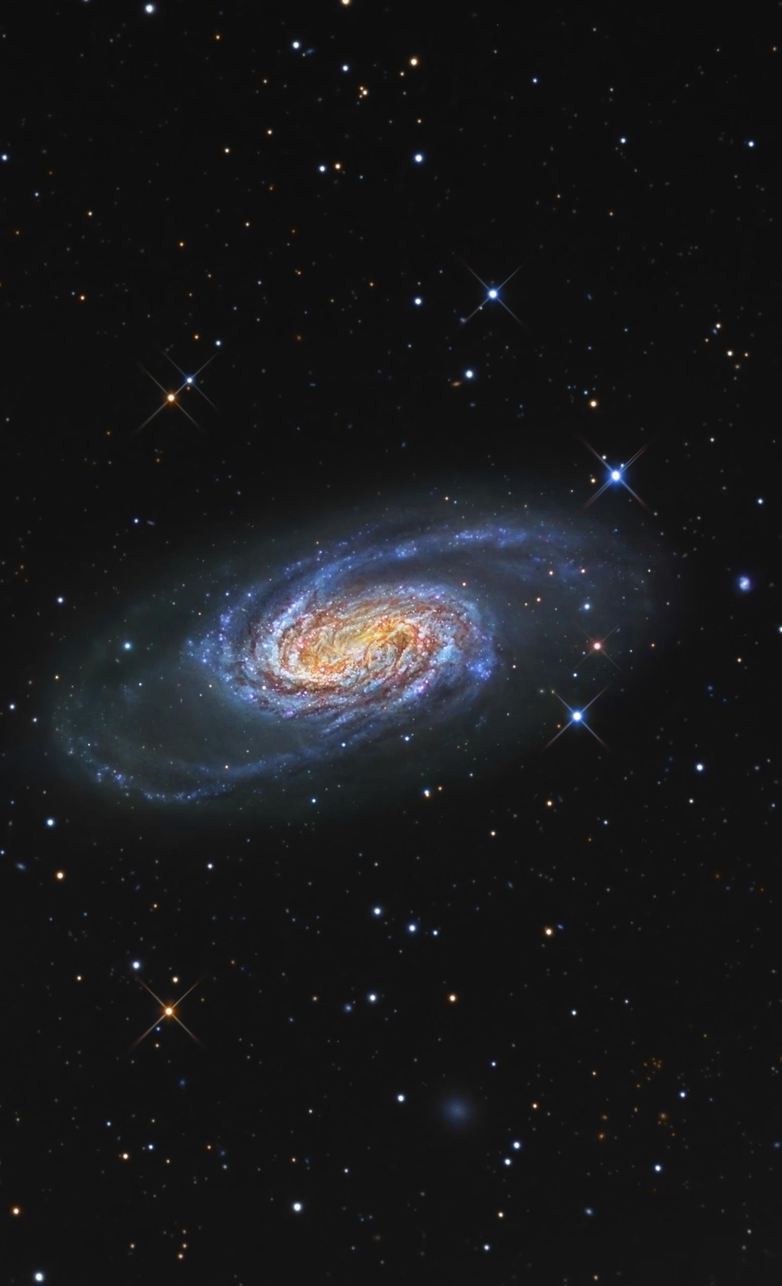 Bright Galaxy NGC 2903