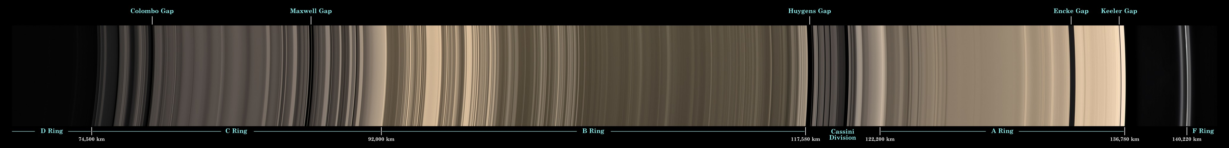 Escáner de anillos