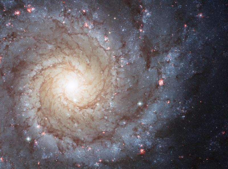 M74: La Espiral Perfecta