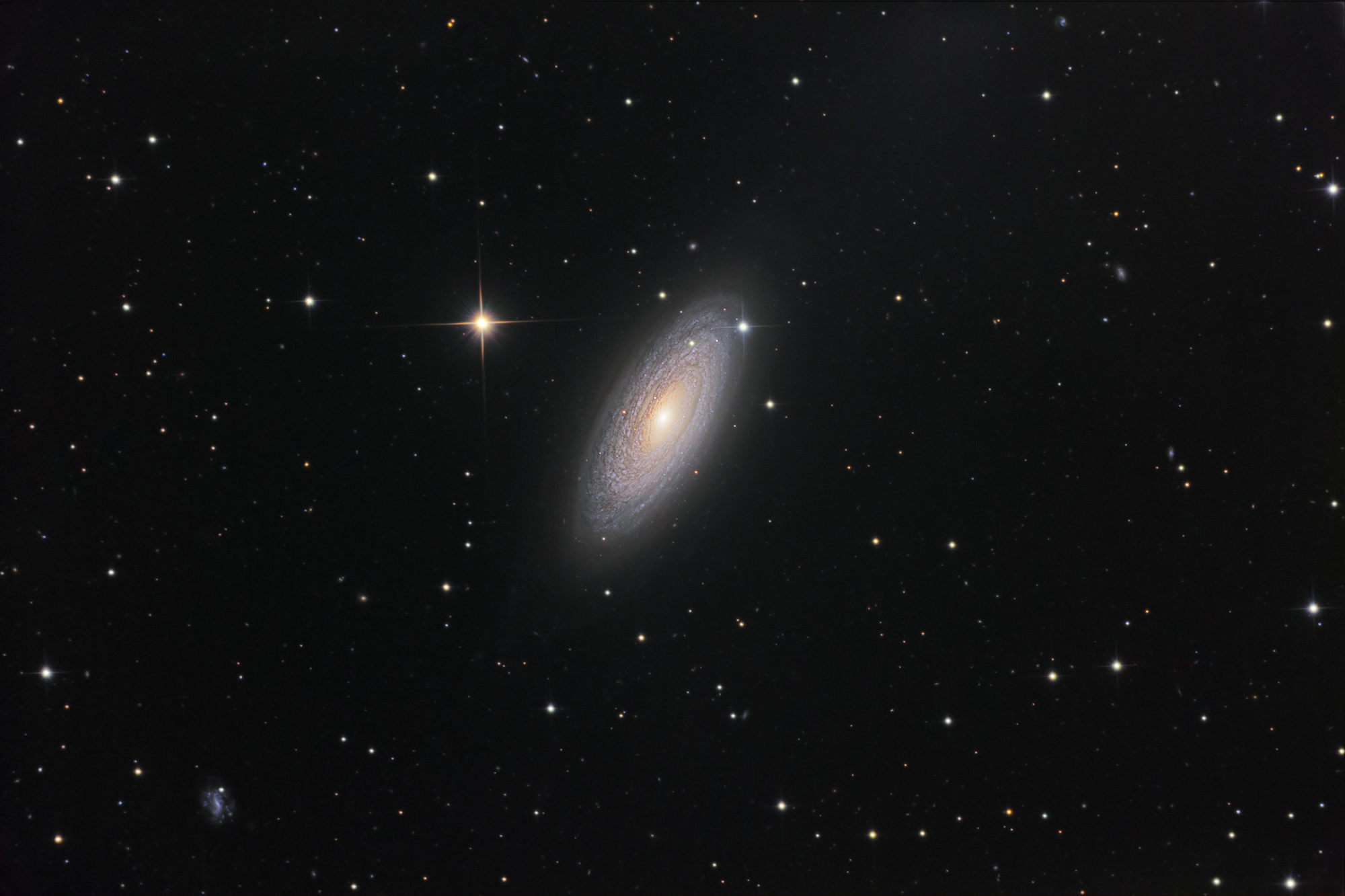 Spiral Galaxy NGC 2841   Alien Soup