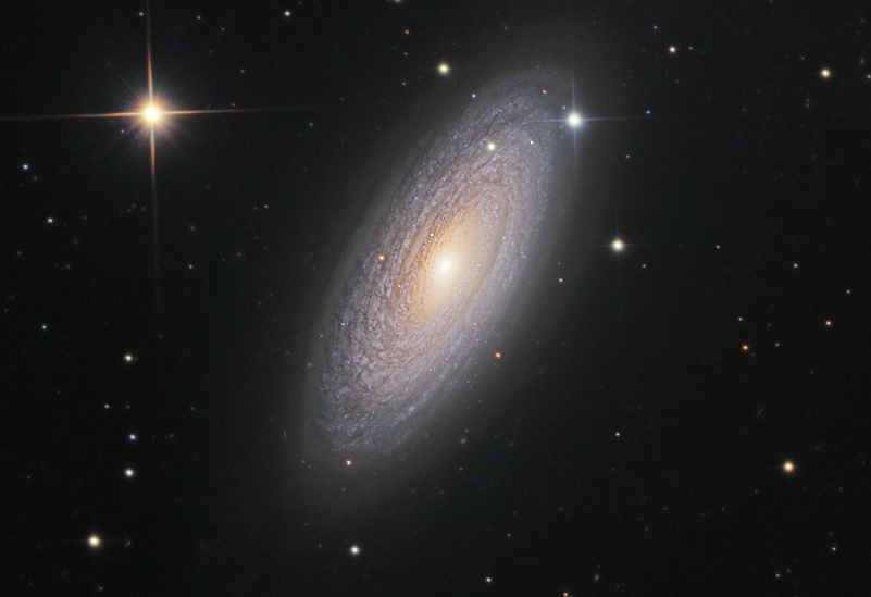 Spirální galaxie NGC 2841