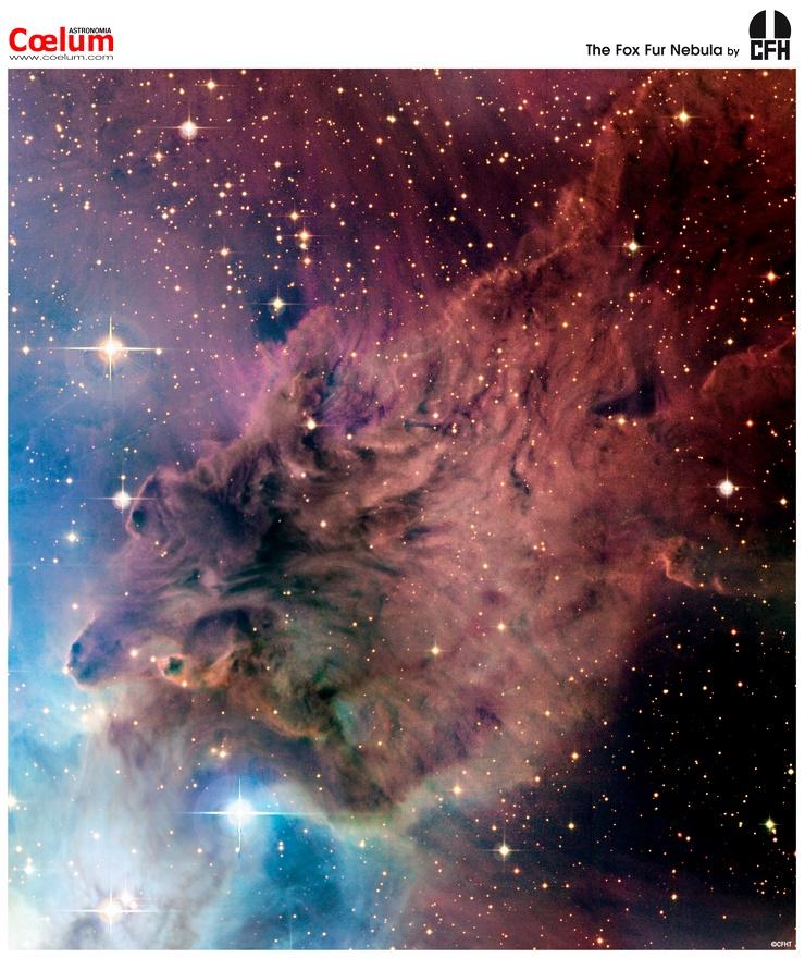Resultado de imagen de La nebulosa piel de zorra